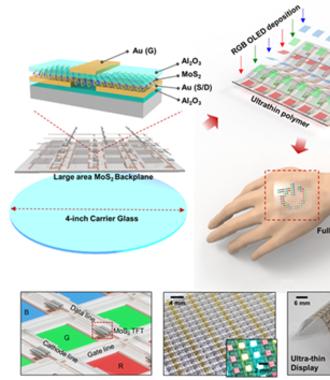 2차원 반도체 소자 활용한 능동방식 '풀컬러' 플렉서블 OLED 개발